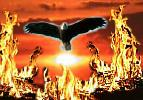 Can  a new America rise from the ashes? - EagleFire image (c) 2003 by NNN